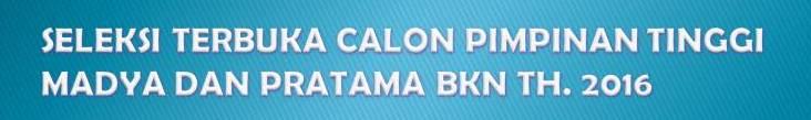 SELEKSI TERBUKA CALON PIMPINAN TINGGI