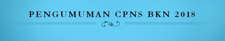 Pengumuman CPNS BKN 2018