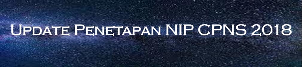 Penetapan NIP CPNS